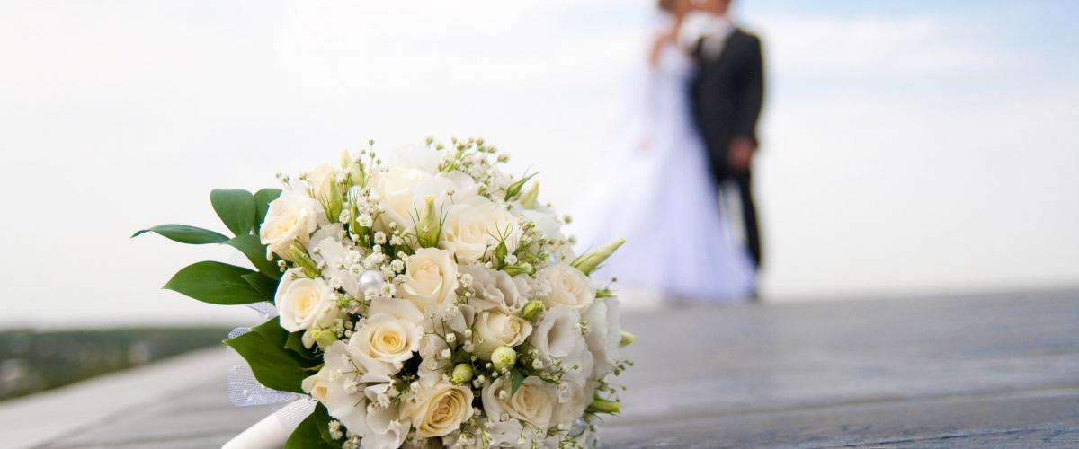 Все про весілля